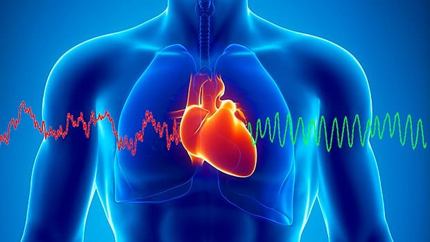 What is Heart Rate Variability (HRV)