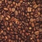 Koffein & L-Theanin
