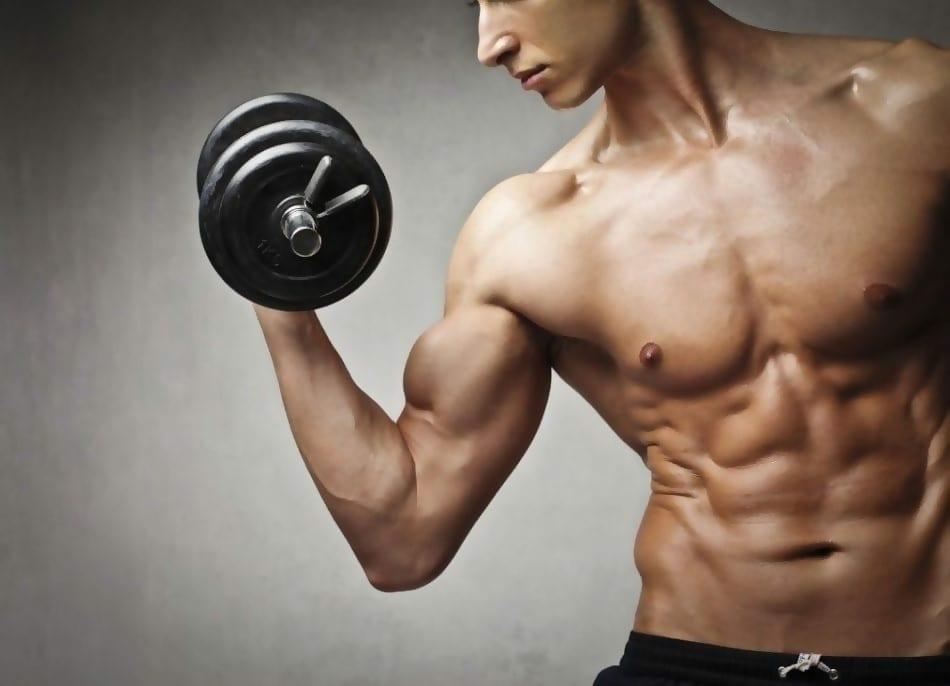 Ist Clenbuterol für die Gewichtsabnahme geeignet