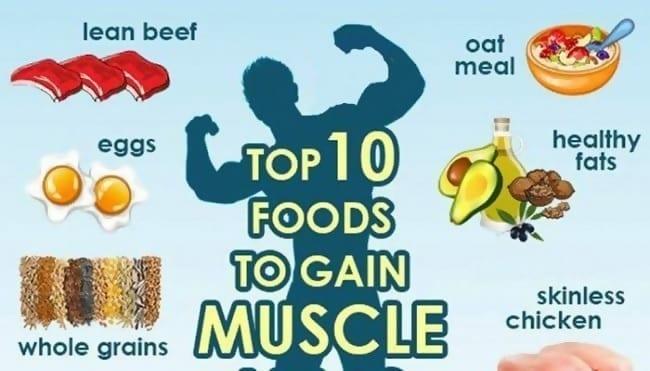 Muskelaufbau-Ernährung: Die 10 besten Lebensmittel zum Muskelaufbau