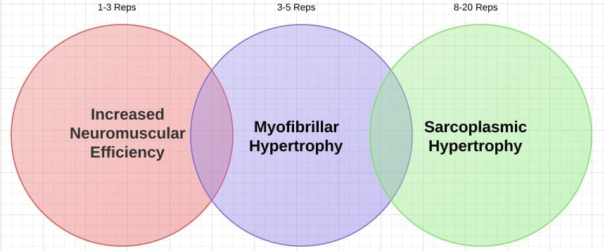 types of hypertrophy