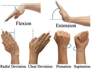 wrist supination