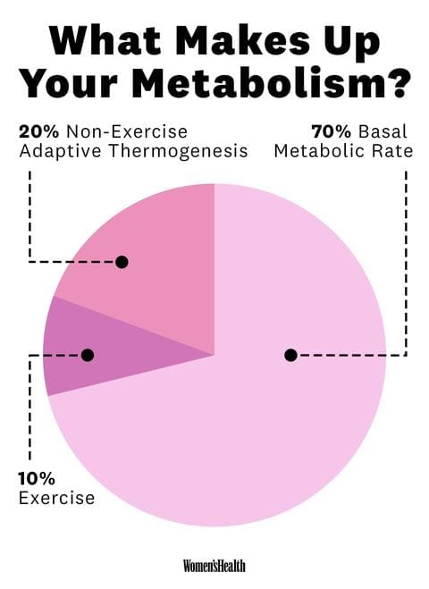 what makes up metabolism