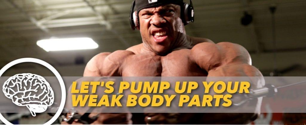 how to bring up weak bodyparts