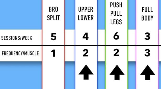 types of splits for the gym