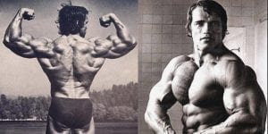 arnold chest and back