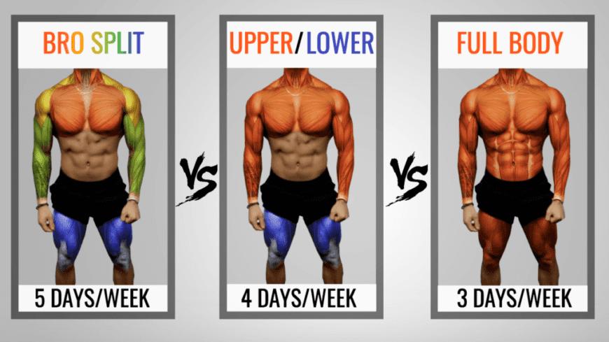 types of training splits