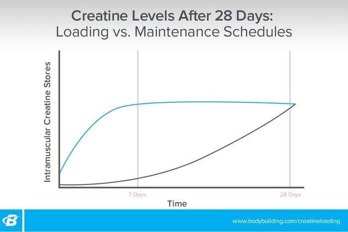 creatine loading