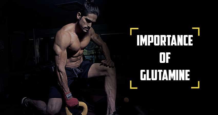 is glutamine good for bodybuilding