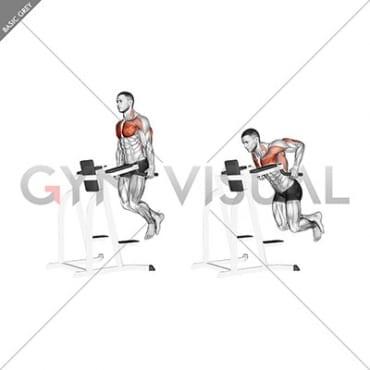 parallel bar chest dip