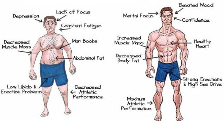 how to test your testosterone levels