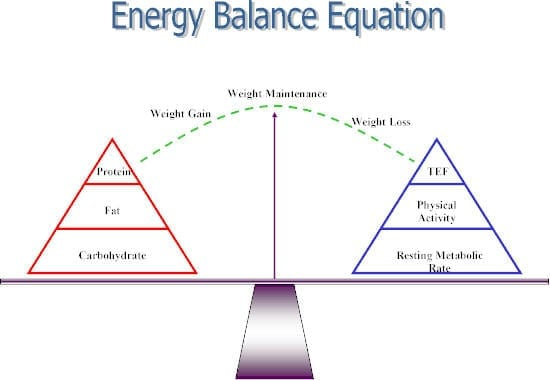 The law of energy balance