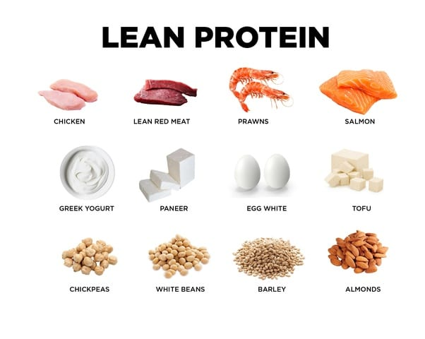 protein sources for gym newbies