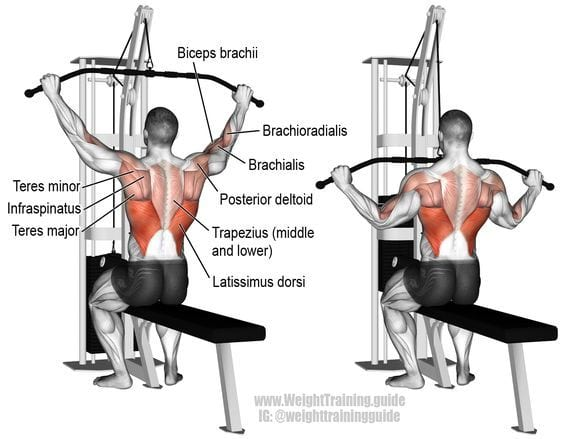 lat pulldown for rich piana back workout