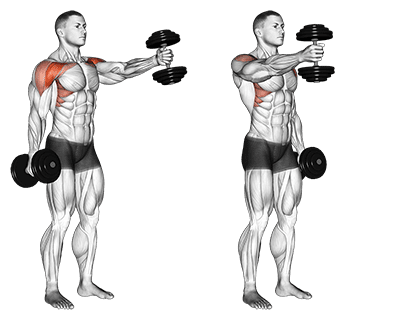 dumbbell front raise for upper chest workout