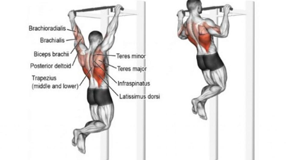 wide grip pull up for hardcore back workout