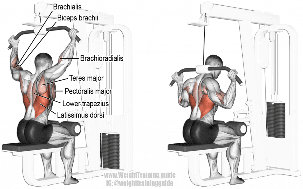 behind the neck pulldown for rich piana back workout