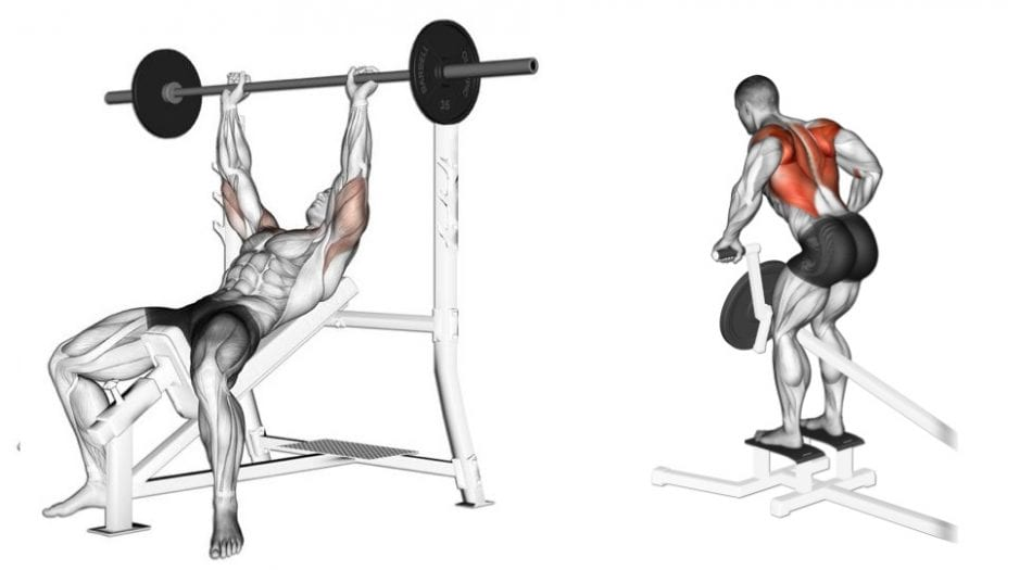 incline bench and t bar superset chest and back workout