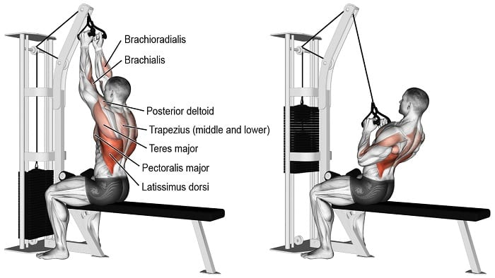 narrow grip vertical pulldown